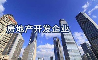 房地产开发企业 -